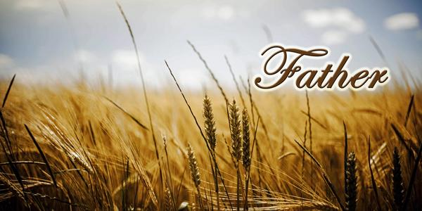 Grain-Field-Father-CS-145.jpg