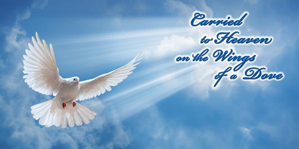 Wings-of-a-Dove-CS-147.jpg