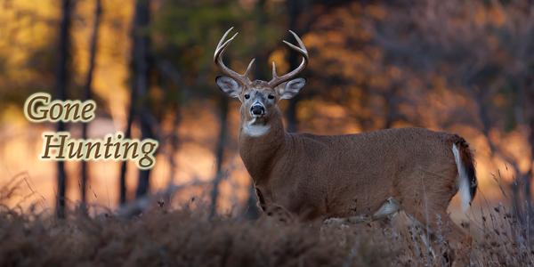 Gone-Hunting-Buck-CS-182.jpg