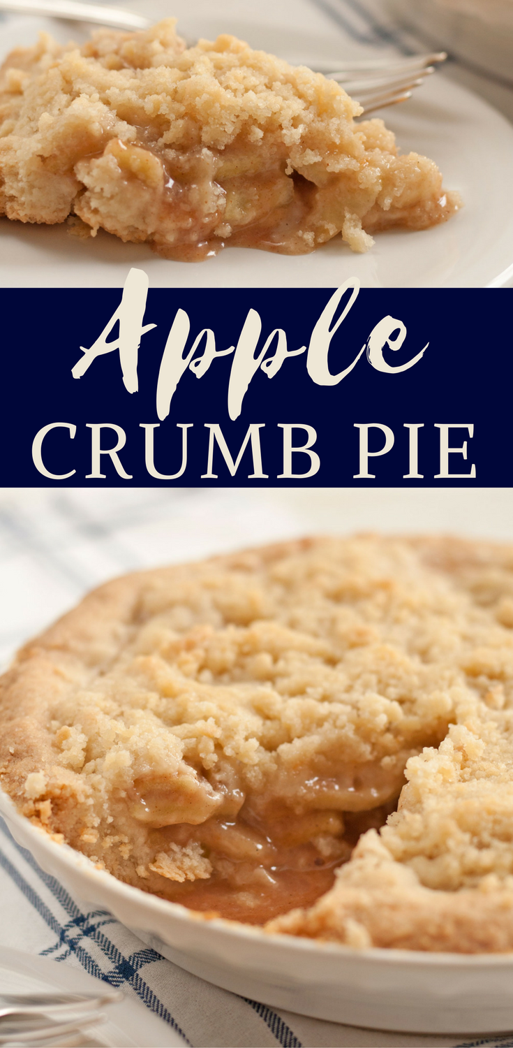 bit-and-bauble-easy-apple-crumb-crumble-pie-recipe-pn.png