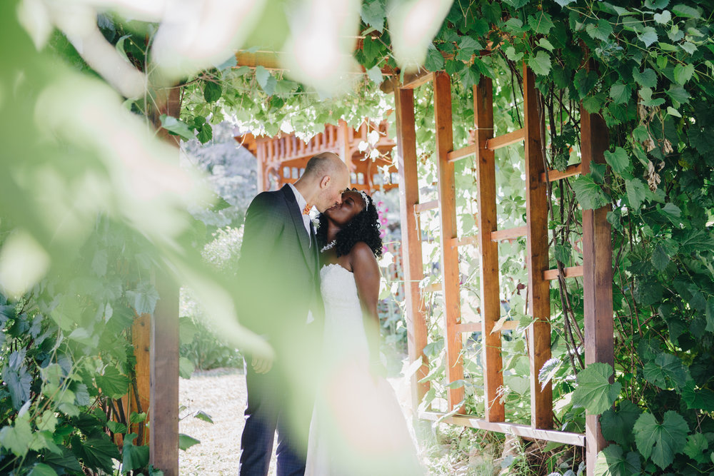 wedding packages - Starting at $1500
