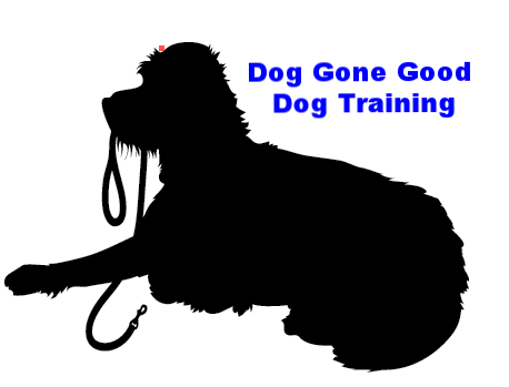 dog trainer dog obedience columbus georgia board and train Dog Gone Good Dog Training