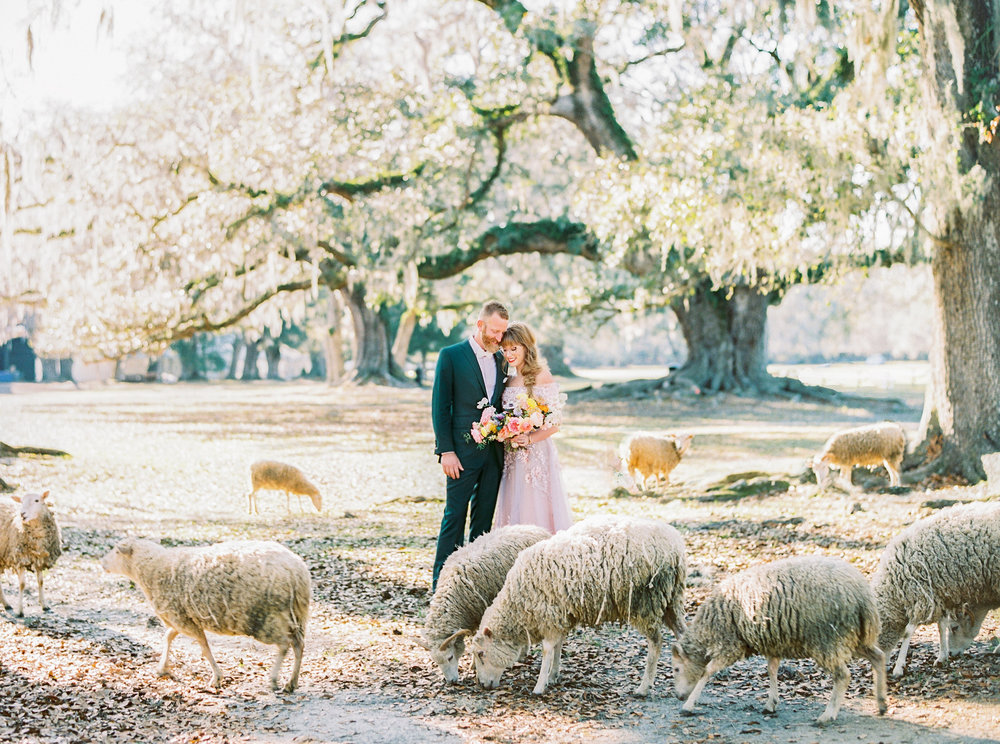 KATIE + JAY - MIDDLETON PLACE