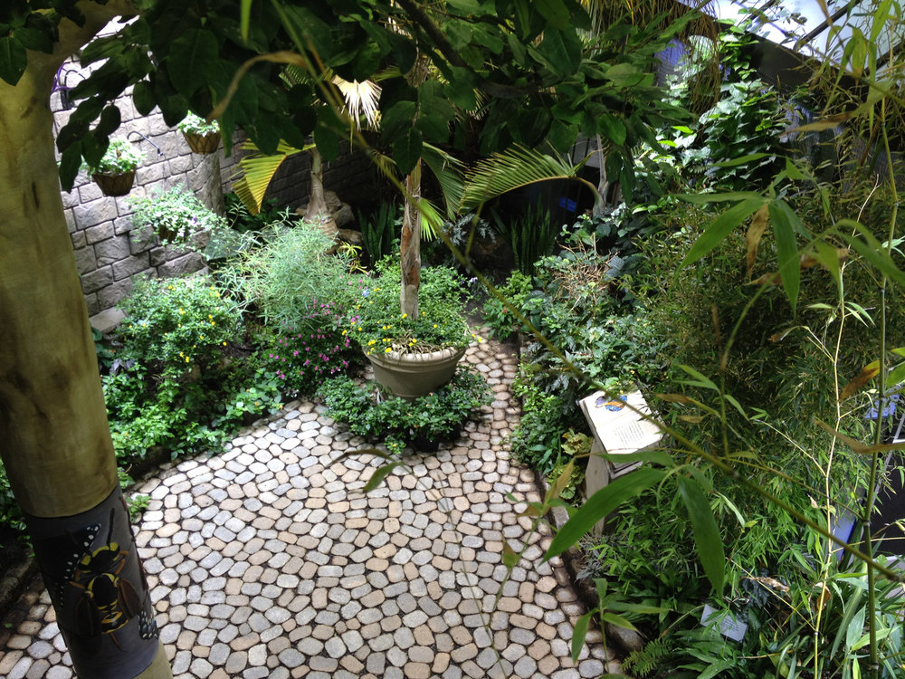 Experienced butterfly garden landscape design company in Long Island, NY