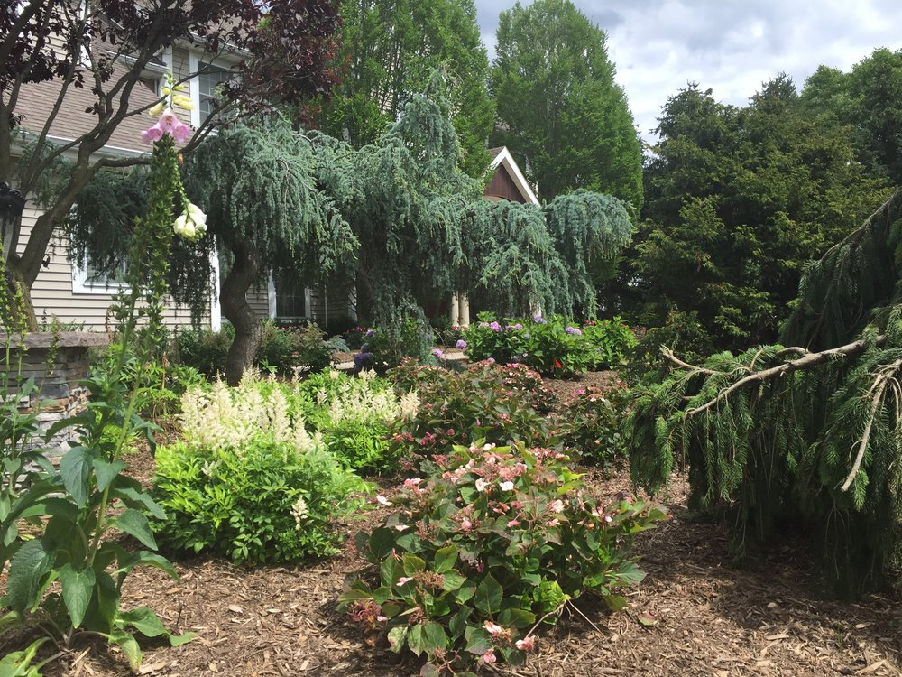 Experienced landscape shrub design company in Long Island, NY