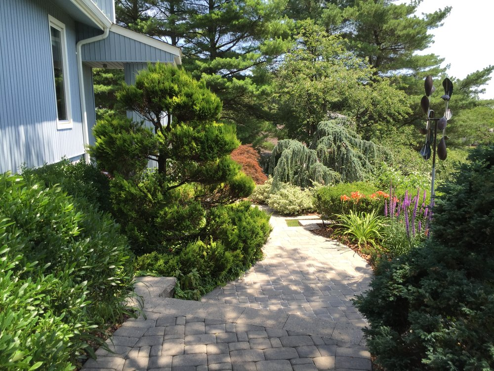 Landscape planting design in Long Island, NY