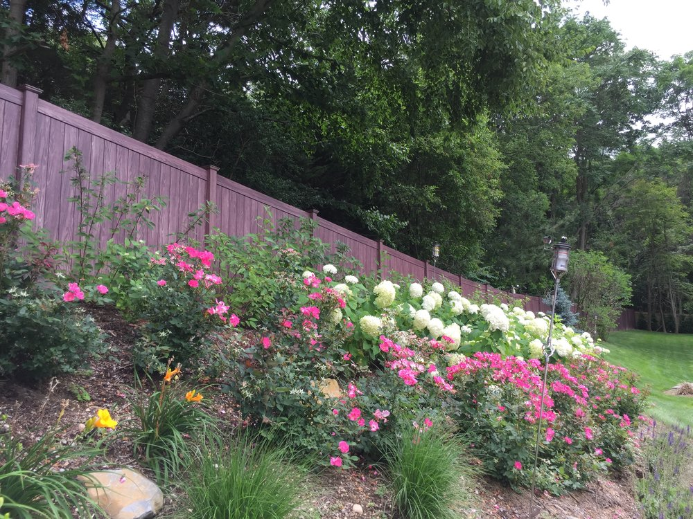 Professional landscape design with cedar fence in Long Island, NY