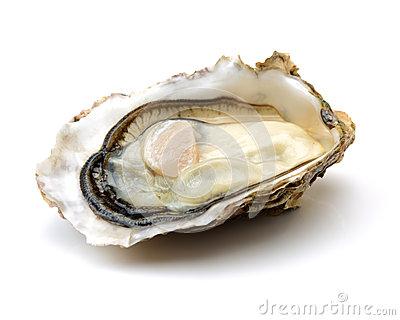 fresh-opened-oyster-white-background-67444991.jpg