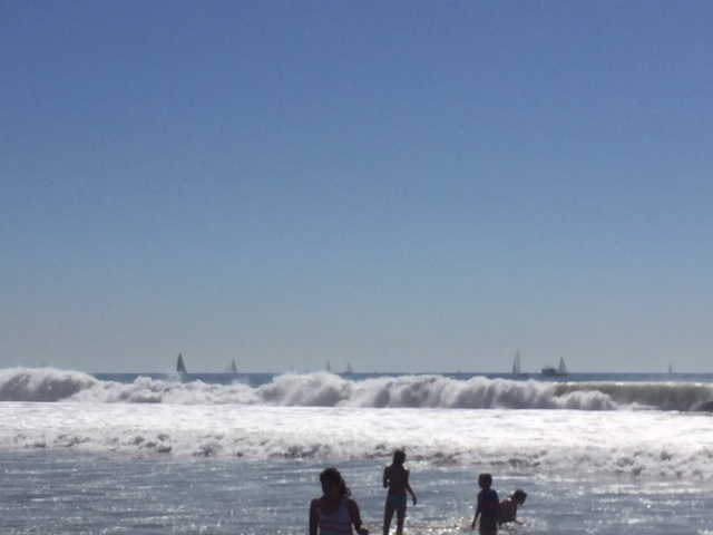 Swimmers at ocean with waves crashing and sail boats in background.