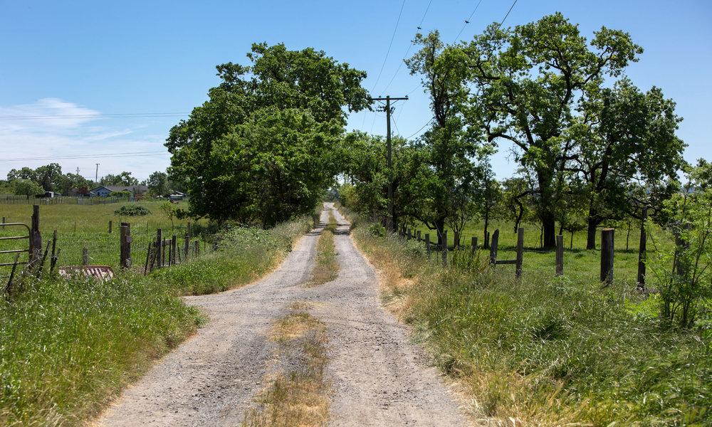 5743 Hall Road_Driveway.jpg
