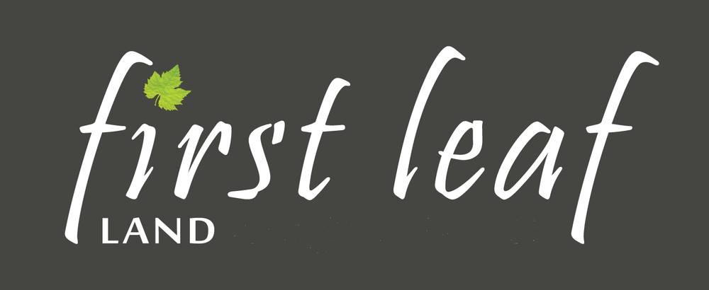 First_Leaf_logo-white-text-large LAND.png
