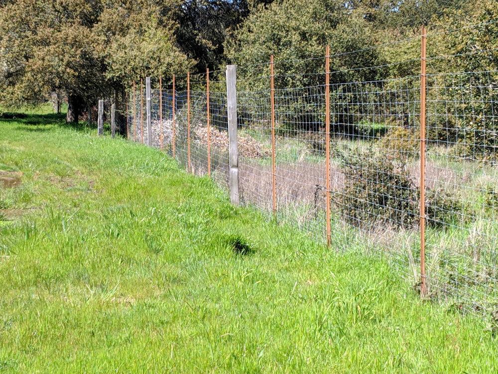 Coleman Valley Deer Fence.jpg