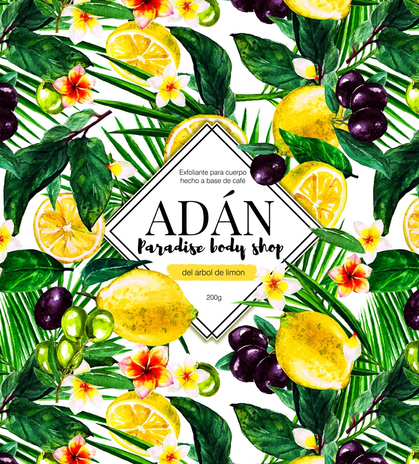 Background for  ADAN Body  , 2017.