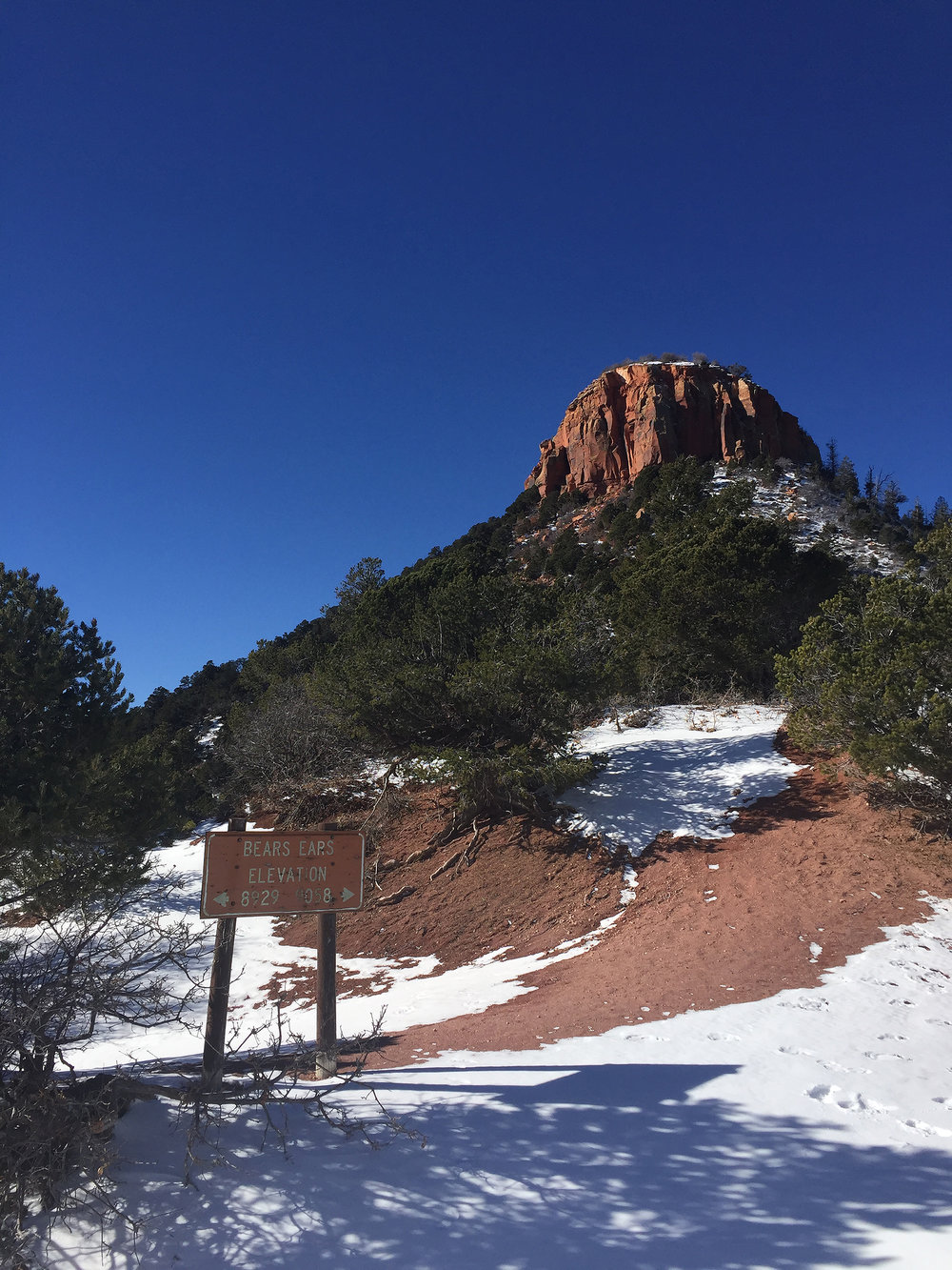 BearsEars_Dec16_Butte-Side_LPaterson_web.jpg