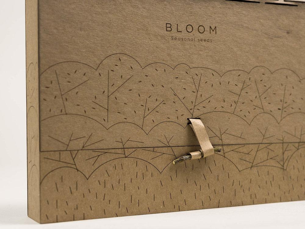 bloom_0014_015.jpg