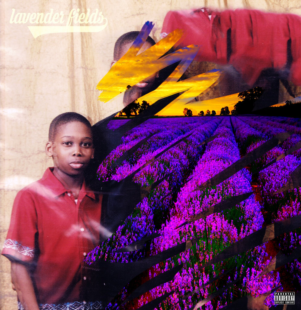 Lavender fields cover.jpg