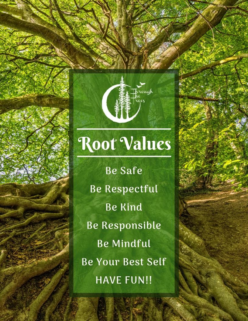 TTT's Root Values.jpg