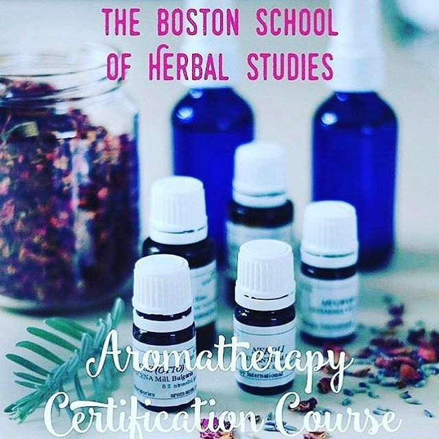 Starts Saturday Oct 20! Don't miss this incredible opportunity to study with New England's premier Aromatherapy Master Teacher✨Linda Patterson will have you making products and blending oils in your very first class. I learned so much from her and so will you...✨See our website to sign up✨www.bostonherbalstudies.com✨🙏🏽 #herbal #essentialoils #bostonherbalstudies