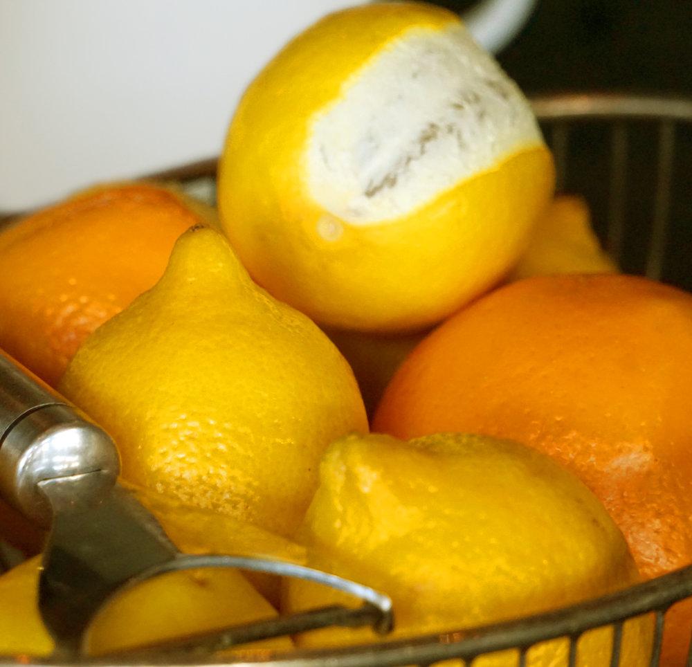 DSC00815_lemon-edit.jpg