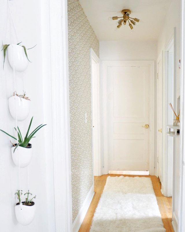 hallway finally. When Your Hallway Finally Looks Alive Unlike This Plant Hanging On The Wall  👍🏻 A