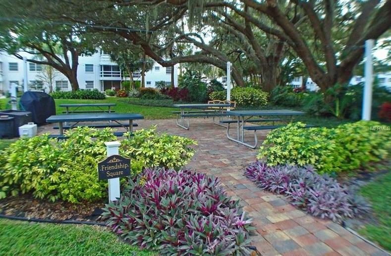 4th Bayshore garden copy.jpg