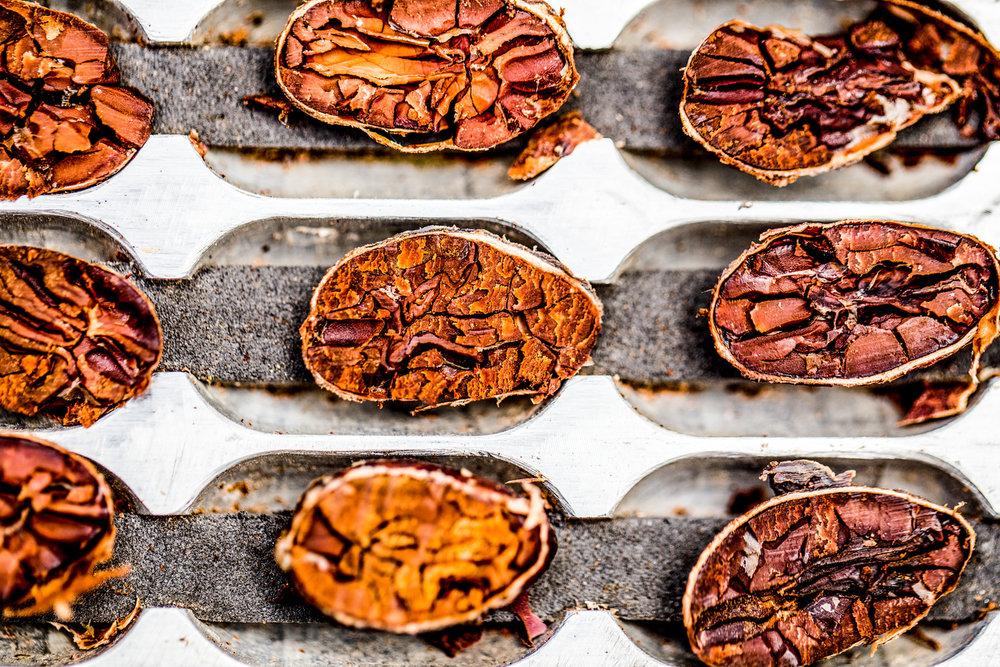 Marou Chocolate Vietnam_Justin Mott_184.JPG