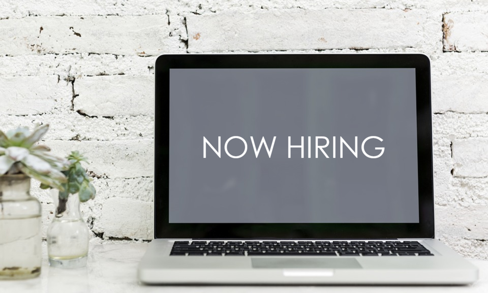 We are on the search for a Technical Lead! - This is a job for someone who has technical talent and wants to make a difference in people's lives.
