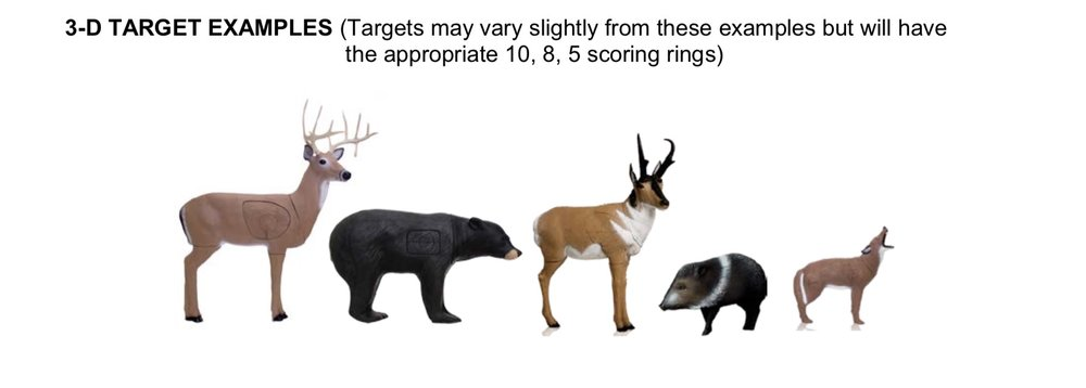 3D Targets.jpg
