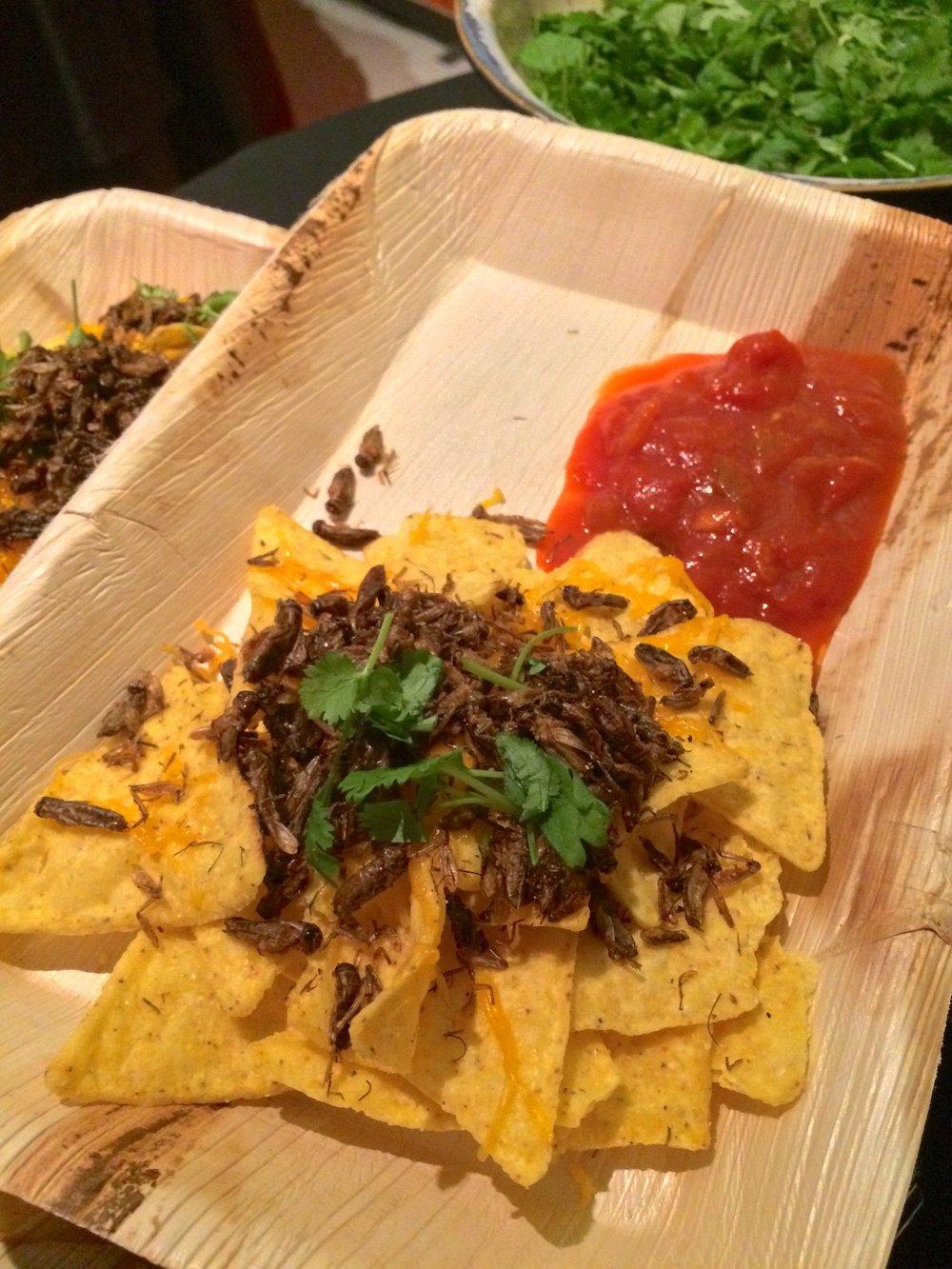 Cricket nacho platter