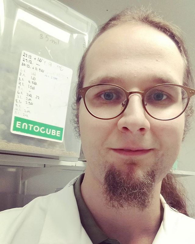 EntoCube's CTO @timikova in action performing a quality check at the Tammela cricket farm. EntoCube maintains the highest standards of excellence in insect farming. #cricketfarming #insectfarming #entotech