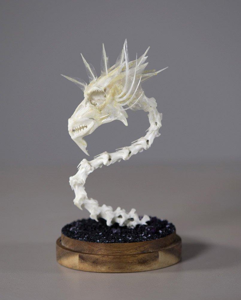 Dragon Skull #1