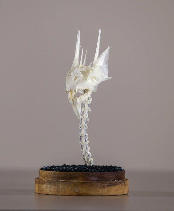 Dragon Skull #3