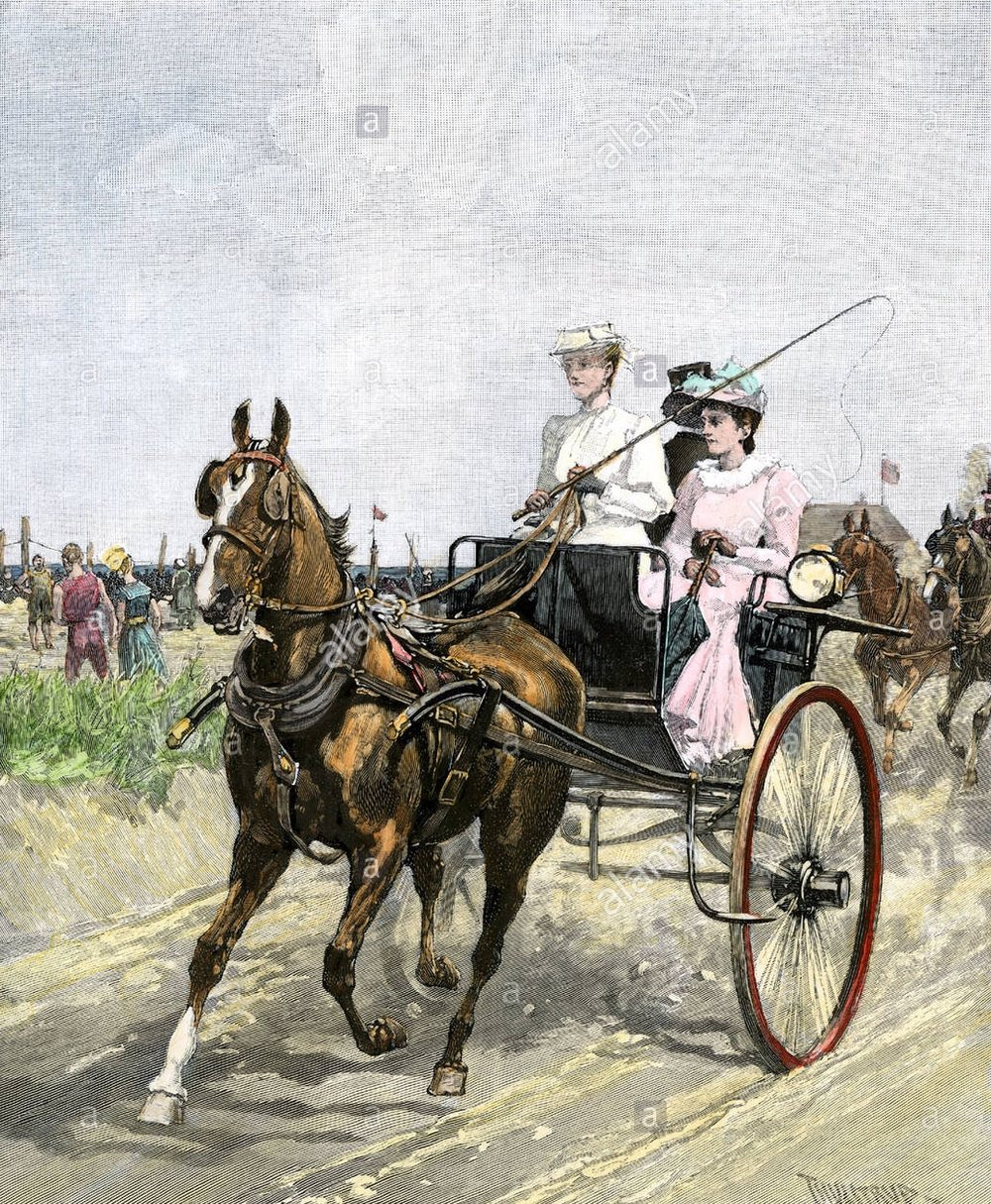 fashionable-young-women-driving-a-horse-and-carriage-on-the-beach-AE1WP5.jpg
