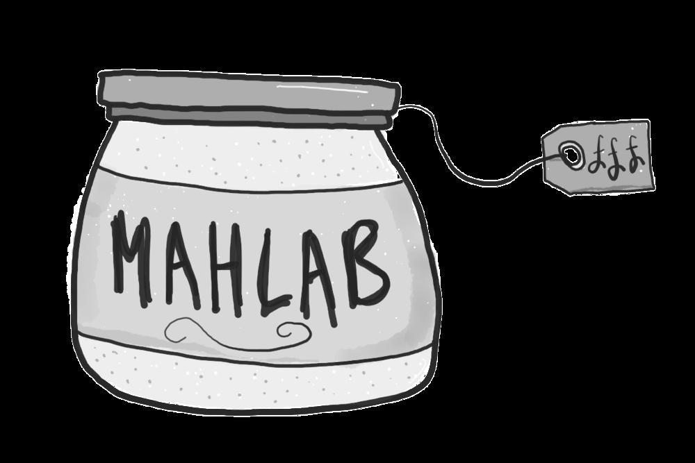 'mahlab' -