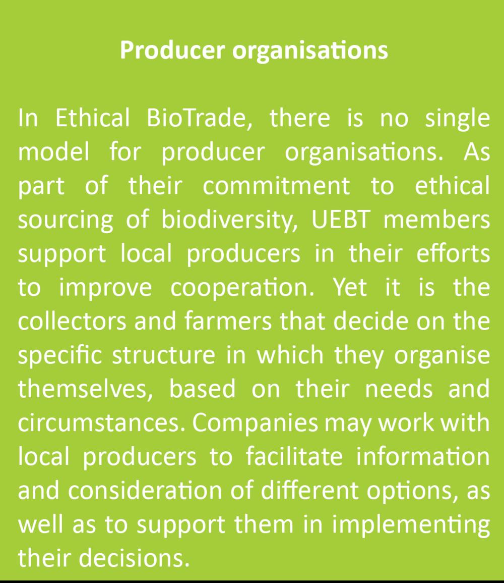 producer organisation.png