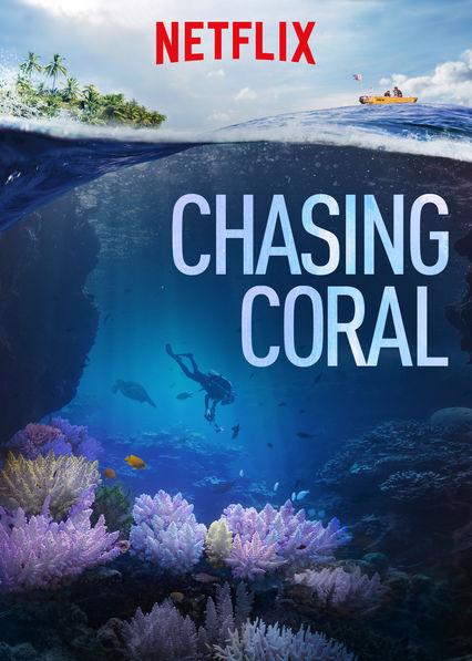 chasing coral.jpg