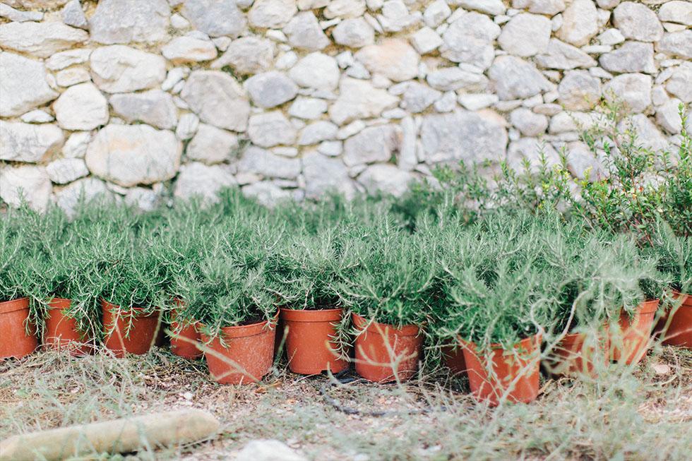 Traumanufaktur_Reisereportage_Mallorca_063.jpg