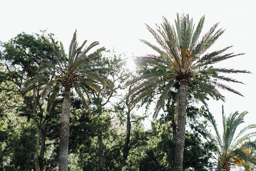 Traumanufaktur_Reiseblog_Hochzeitsfotograf_Reisereportage_Mallorca_Santanyi_Shotelet_002.jpg