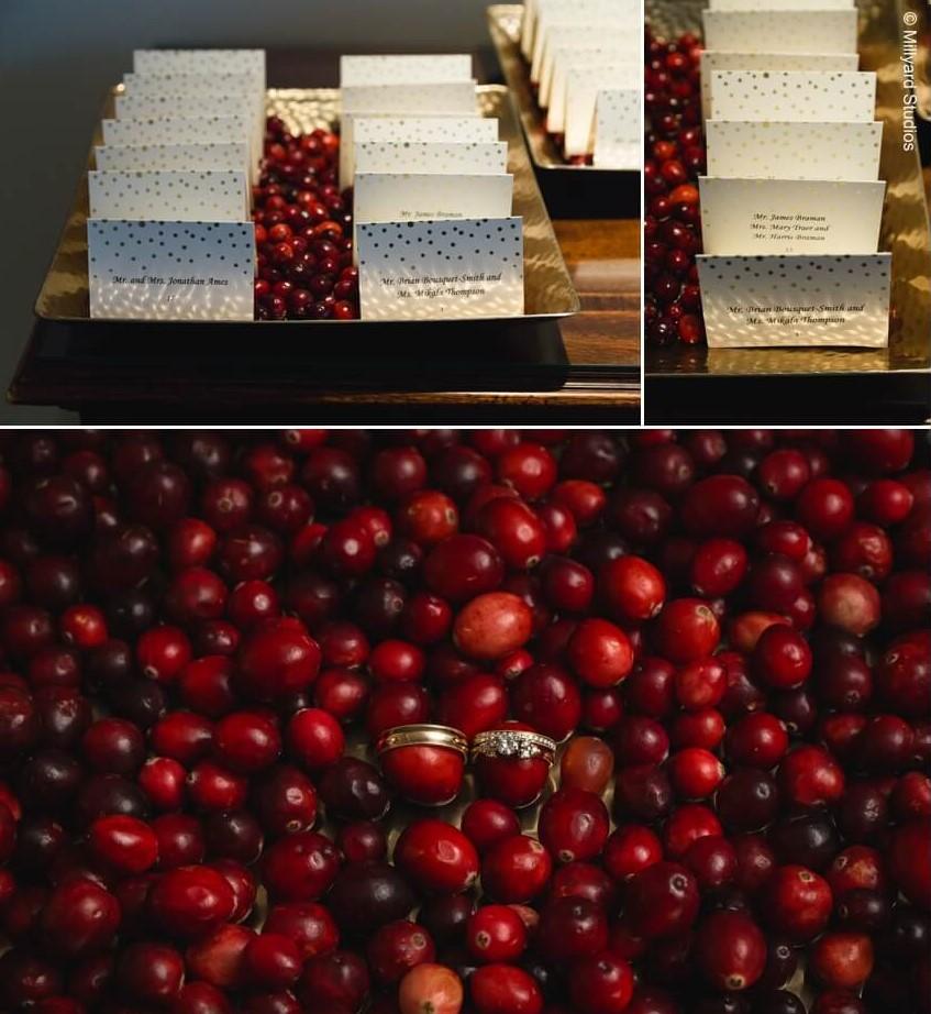 Cranberry 0b.jpg