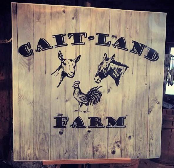 Cait Land Farm Sign.jpg