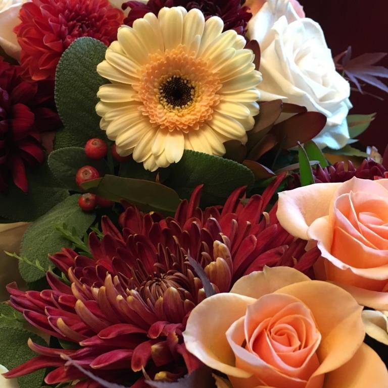 Flower Close Up 3.JPG