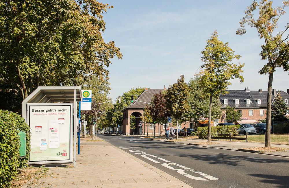 2 Grüngürtel7_72.jpg
