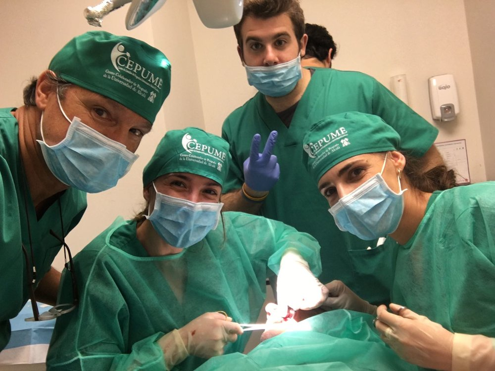 Máster en Implantologia y Rehabilitación sobre implantes - Universidad de Alcalá de Henares (CEPUME)Director del máster.