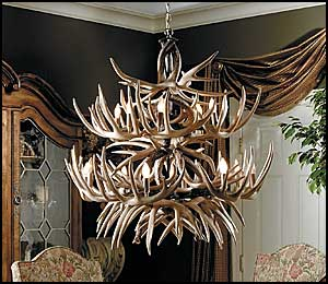 The Allegheny Whitetail Antler Chandelier