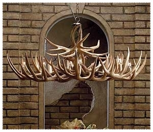 The Appalachian Whitetail Antler Chandelier