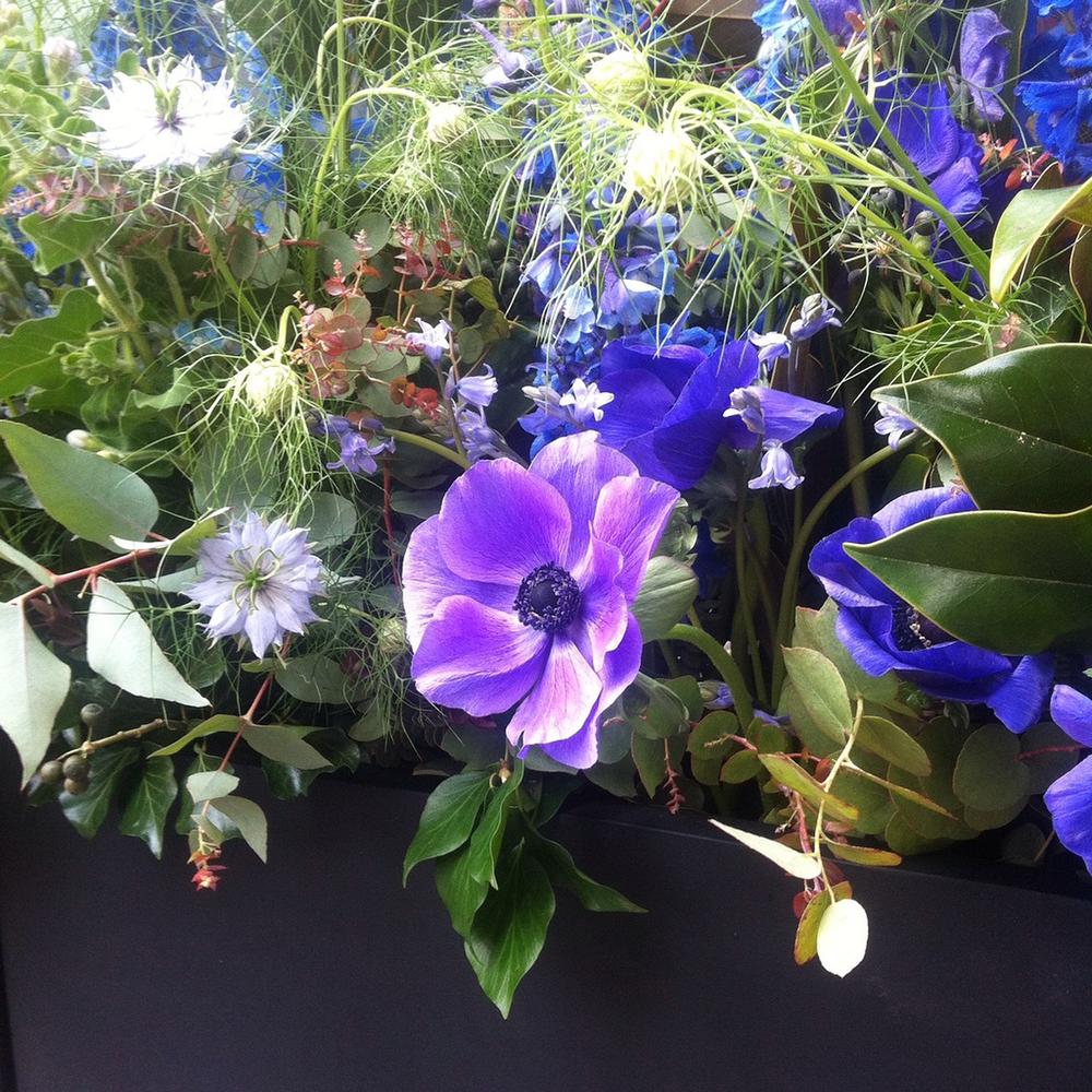 Spring-flower-box-detail-CD-London-16.png