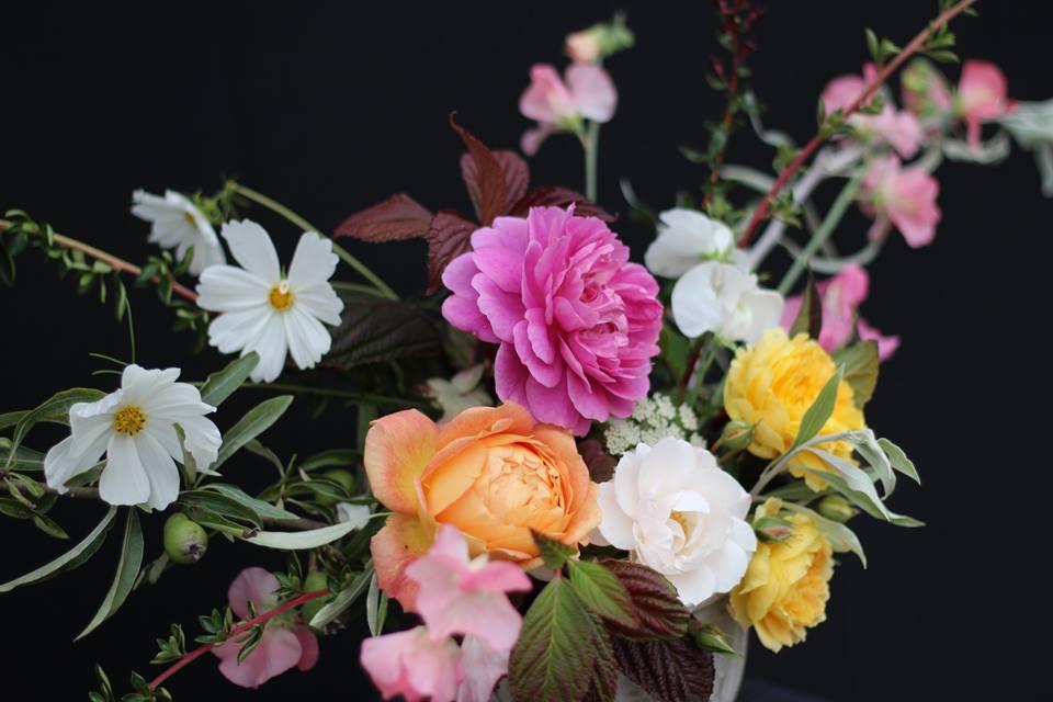 David Austin roses, Cosmos and Sweet Peas .jpg