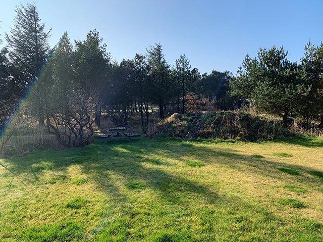 A spring ready garden ☀�🌱 #woodhouse #innature #nationalparkthy #architecture #nordichome #vacationhome @urlaubsarchitektur