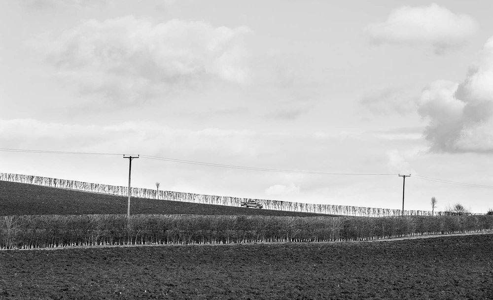 Farmland, Lincolnshire