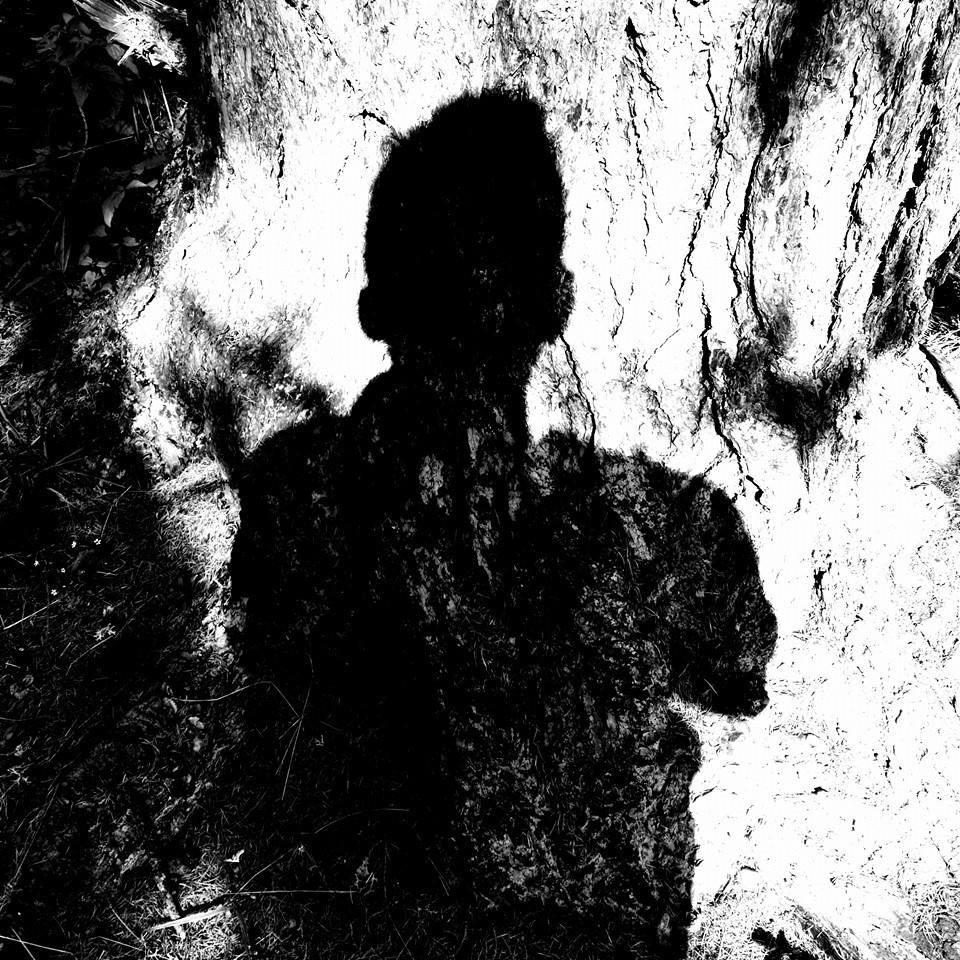 Bosh / Shadowcomplex